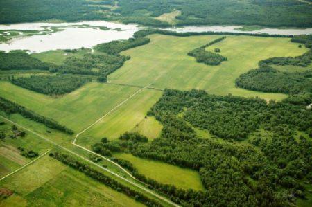 Сновым законом можно получить бесплатный гектар земли повсей РФ
